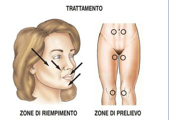 Dottssa Fortunato Regina