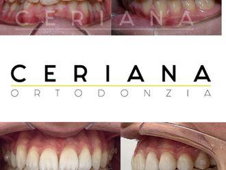 Dentisti-791387